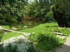 Nitra - Park 3
