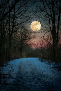 Here are some amazing Full Moon Photography Tips and Ideas that will come handy if you are keen on taking creative moon pictures. Beautiful Moon, Beautiful World, Shoot The Moon, Moon Magic, Photos Voyages, Winter Scenes, Stars And Moon, Belle Photo, Night Skies