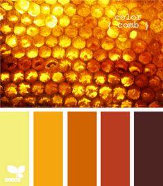 beautiful amber-colored honeycomb