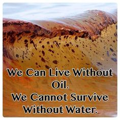 We can live without oil. We cannot survive without water.