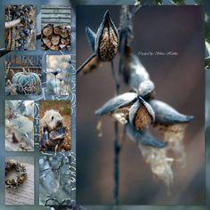 Collages de Silvia Hokke