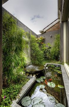 If you have a backyard, you could easily turn it into a gorgeous garden with fountains, pools, and flowers. A water garden can turn your backyard into a relaxing haven that everyone can enjoy. The water from the fountain or… Continue Reading → Ponds Backyard, Backyard Landscaping, Landscaping Ideas, Backyard Ideas, Modern Backyard, Tropical Landscaping, Pond Ideas, Modern Pond, Backyard Designs