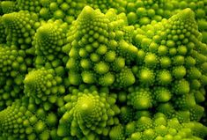 You know what I love?  Fractals - that you can eat!