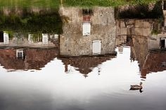 French landscape photography,duck reflected in water,fine art print,home decor,country style,shabby chic,Montmorillon Vienne,art deor,wall