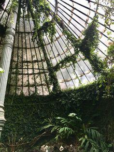 Slytherin Aesthetic, Bright Future, Botanical Gardens, Mystic, Madrid, Solar, Fair Grounds, Earth, Fine Art