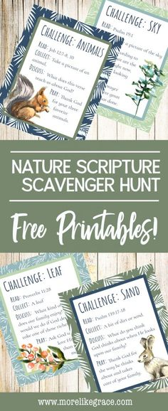 A free printable scavenger hunt that helps families explore nature and Scripture together. | Scavenger Hunt | Nature Scavenger Hunt | Scripture Scavenger Hunt | Family Fun | Family Discipleship | Christian Family | Kids Bible Activities | Christian Moms | Free Printable | Nature Activities | Sunday School Ideas | Outdoor Family Activities | #freeprintables | #familyfun | #christianfamily