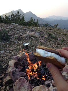 S'more of what?!