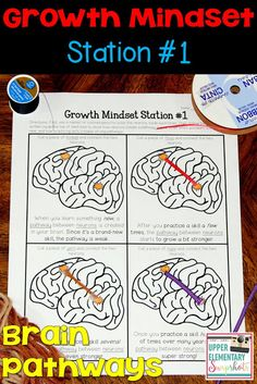 1 of 4 FREE growth mindset learning centers! Students learn how pathways are created between brain neurons... and how practice makes these pathways stronger.