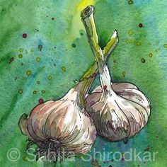pen and ink with watercolor vegetables - Google Search