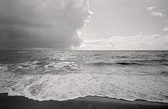 La spiaggia, Ostia, 2011