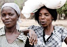 Zambia Zimbabwe, Africa, Live