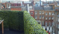 An example of our Deluxe Boxwood Artificial Hedge
