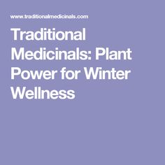 Traditional Medicinals: Plant Power for Winter Wellness