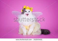 Foto d'archivio di Butterfly Child | Shutterstock