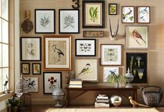 45 Ideas For Living Room Diy Apartment Wall Art Apartment Walls, Eclectic Home, Decor, Bird Wall Art, Gallery Wall, Flying Birds Wall Art, Cool Walls, Frames On Wall, Apartment Wall Art