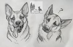 Cute animals to draw, cute drawings of animals, baby animal drawings, Baby Animal Drawings, Animal Sketches, Drawing Sketches, Drawing Animals, Drawings Of Dogs, Dog Face Drawing, Cute Dog Drawing, Sketching, Drawing Faces