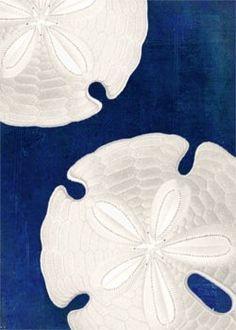 Sand Dollars - Navy, Cobalt Blue & White