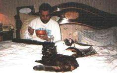 Freddie Mercury oggi avrebbe compiuto 71 anni. Non tutti sanno che era un Gattofilo sfegatato. Ha dedicato anche una canzone ai suoi adorati mici.   Il Mio Gatto Miao