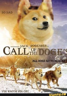 all, doge, goes, to, heaven