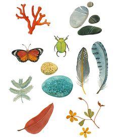 Nature Collection by @Geninne D Zlatkis D Zlatkis D Zlatkis