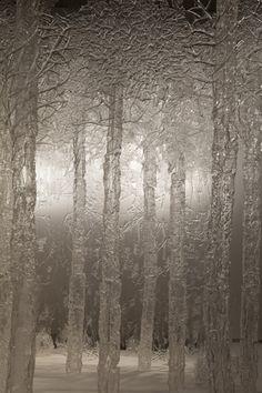 Glimmering Gone ~ Beth Lipman
