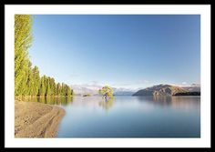 Landscape Framed Print featuring the photograph Wanaka Tree New Zealand Landscape Mountain Lake by Joshua Small Landscape Photos, Landscape Photography, Nature Photography, Beautiful Photos Of Nature, Nature Photos, Framed Art Prints, Wall Art Prints, New Zealand Landscape, Stretched Canvas Prints