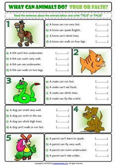 Exercise Worksheets for Kids Ability and Inability True or False Esl Exercise Worksheet English Worksheets For Kids, 2nd Grade Worksheets, English Lessons For Kids, Kids English, Learn English, English Activities For Kids, Pronoun Worksheets, Esl Worksheets For Beginners, Animal Worksheets