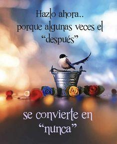 Spanish Inspirational Quotes, Just Do It, Cute Girls, Baseball Cards, Movies, Movie Posters, Shabbat Shalom, Lawyer, Nostalgia