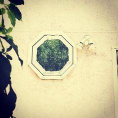 """""""No te asomes a la ventana que no hay nada en esta casa. Asómate a mi alma."""" Miguel Hernández"""