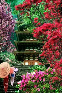 There are many beautiful places to visit in Japan all year round. The difficulty is choosing which place you want to go to the most. Place in japan, secret places in japan Kyoto Japan, Japon Tokyo, Japan Japan, Okinawa Japan, Japan Sakura, Beautiful World, Beautiful Places, Beautiful Beautiful, Osaka Castle