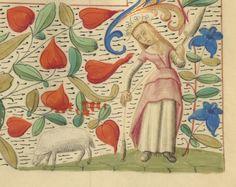 http://gallica.bnf.fr/ark:/12148/btv1b60012792/f805.image