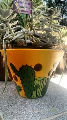 Minha arte! #cactus #jardinagem #pintura #yellow #diy