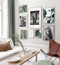Nature-inspired picture gallery with posters in green tones and oak frames - ins . Nature-inspired picture gallery with posters in green tones and oak frames - inspiration picture wall - Posterstore. Picture Wall Living Room, Living Room Decor, Picture Walls, Inspiration Wand, Poster Store, Photo Wall Collage, Frames On Wall, Gold Frame Wall, Frame Wall Collage