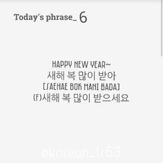 Happy new year in Korean!