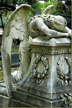 Statue of The Weeping Angel (According to Legend, even the Angels weep) Cemetery Angels, Cemetery Statues, Cemetery Art, Statue Ange, Old Cemeteries, Graveyards, Angels In Heaven, Guardian Angels, Angels And Demons