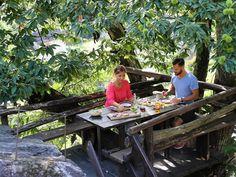 Discover Grotto Milani in Ticino, the Mediterranean soul of Switzerland. Small moments, a great experience. Small Moments, Milani, Switzerland, Greenery, Image, Locarno, Destinations