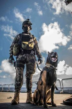 "French ""fusillier marin"" (i.e Naval infantry) with his belgian Malinois. Belgian Malinois, Military Working Dogs, Military Dogs, Police Humor, Police Dogs, War Dogs, Tactical Training, Jesus Tattoo, Special Forces"