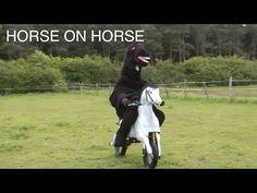 WTF Motorhorse - YouTube