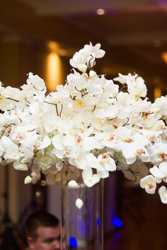 dazzling white orchid filled wedding