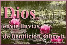 "DEVOCIONAL DIARIO: ""LLUVIA DE BENDICIONES"" Visite mi blog: http://reflexionesparavos.blogspot.com/2014/10/lluvia-de-bendiciones.html?spref=tw #lluvia #Oracion #reflexiones"