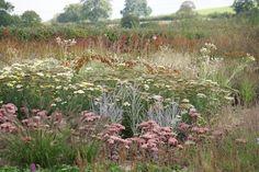 Oudolf Field - Hauser & Wirth Somerset | Flickr - Photo Sharing!