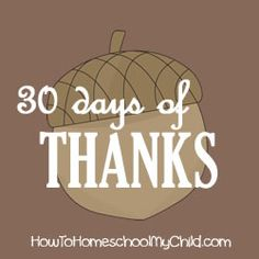 attitude of gratitude - 30 days of thanks