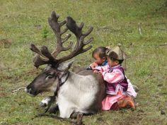 Bilderesultat for Tsaatan - Reindeer Nomads. Mongolia+ photos