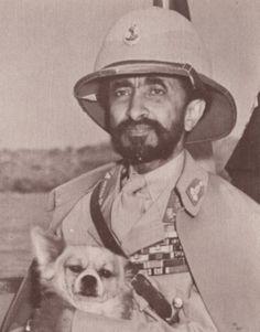H.I.M. & pet dog