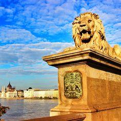 Love those Lions on Chain Bridge
