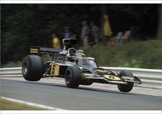 Print of 1975 German Grand Prix - Ronnie Peterson: Ronnie Peterson, retired, action F1 Lotus, Brazilian Grand Prix, Spanish Grand Prix, Mario Andretti, Monaco Grand Prix, Indy Cars, F1 Racing, Flyer, Brian Redman