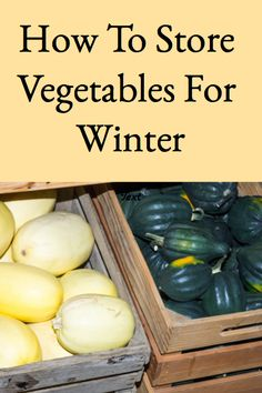 This post describes how to store vegetables for winter successfully and provides a handy chart describing the proper storage conditions for each vegetable. Growing Vegetables, Fruits And Vegetables, Store Vegetables, Fruit And Vegetable Storage, Canned Food Storage, Root Cellar, Survival Food, Outdoor Survival, Emergency Preparedness