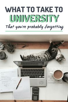 Things to take university that most people forget! uni tips fresher 518969557059631649 College Dorm List, College Freshman Tips, College Hacks, College Life, College Must Haves, College Packing, Education College, Elementary Education, Health Education