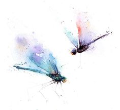 DRAGONFLY Aquarell  Dekor Libelle Libelle Libelle Wandkunst