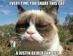 Maybe one day it will all lead up to Justin Beiber's death...then the world would be complete.